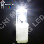 BI PIN-T5 bulbs LED