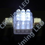 LED-festoon bulbs  license plate bulbs